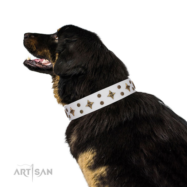Comfortable wearing decorated dog collar of top quality material