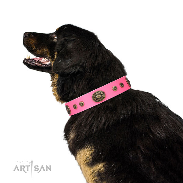 Inimitable embellished natural leather dog collar for easy wearing