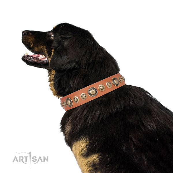 Durable buckle and D-ring on full grain leather dog collar for daily walking