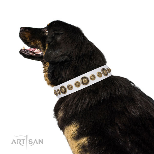 Corrosion resistant buckle and D-ring on natural leather dog collar for everyday walking