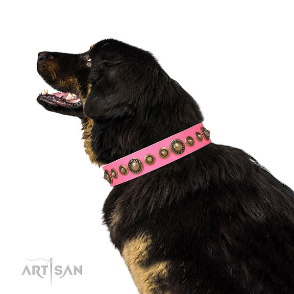 Corrosion resistant buckle and D-ring on natural leather dog collar for walking