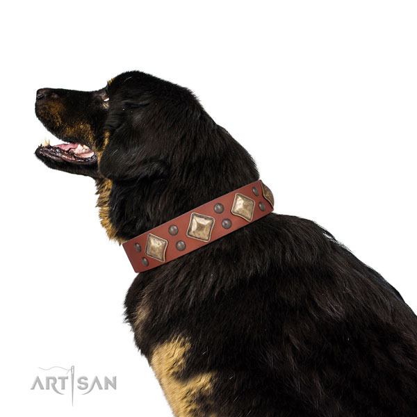 Basic training adorned dog collar made of quality leather