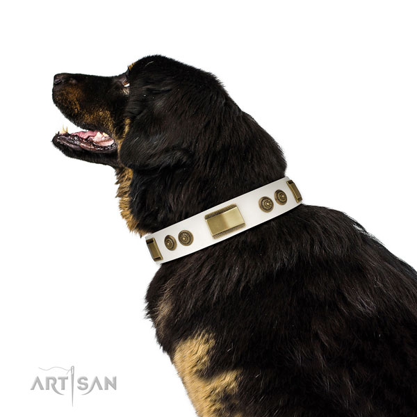 Durable comfortable wearing dog collar of genuine leather