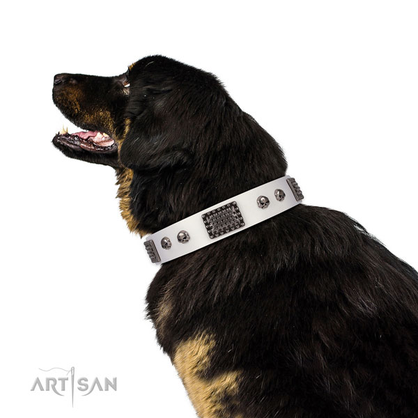 Easy to adjust full grain natural leather collar for your stylish doggie