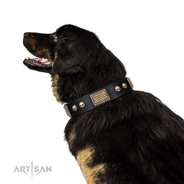 Strong hardware on natural genuine leather dog collar for everyday use