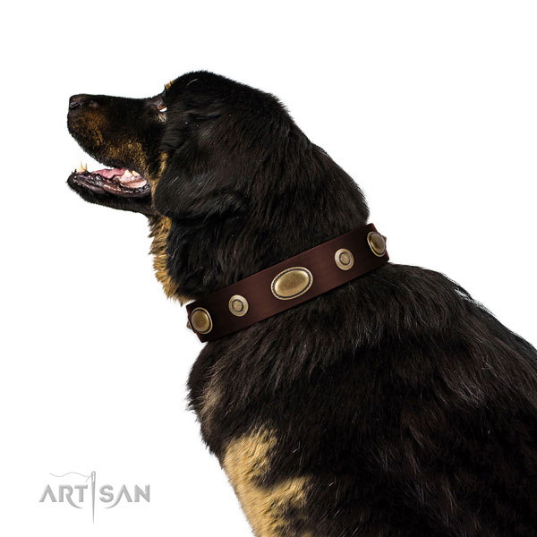 Easy wearing dog collar of natural leather with exquisite decorations