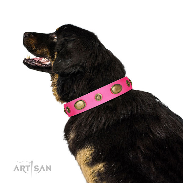 Basic training dog collar of leather with trendy adornments