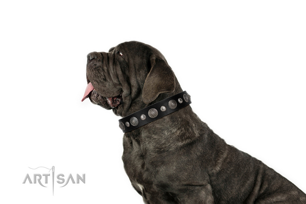 Leather collar with strong D-ring for your attractive doggie