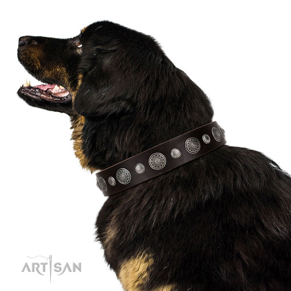 Fashionable natural leather dog collar with corrosion proof hardware