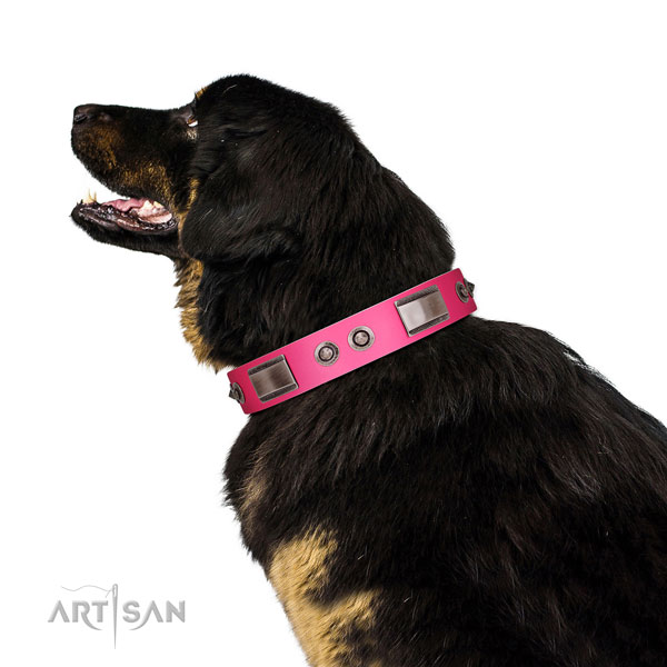 Handcrafted natural leather dog collar with decorations