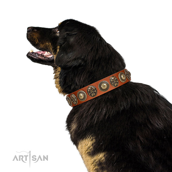 Embellished leather collar for your beautiful doggie