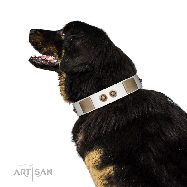 Comfortable wearing dog collar of natural leather with stunning decorations