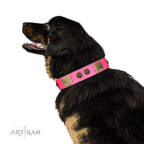 Embellished dog collar made for your beautiful four-legged friend