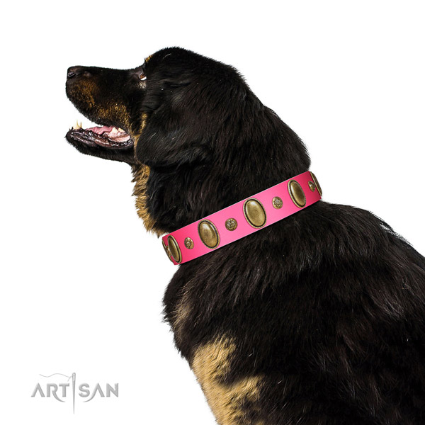 Stylish walking flexible full grain genuine leather dog collar with embellishments