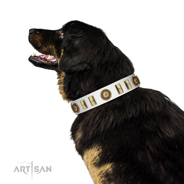 Embellished leather dog collar with corrosion resistant buckle