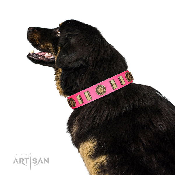Fashionable leather dog collar with rust resistant traditional buckle