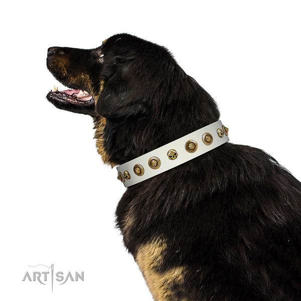 Fashionable full grain genuine leather dog collar with adornments