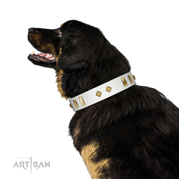 Everyday walking soft genuine leather dog collar with decorations