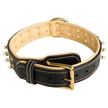 Leather Dog Collar Spiked Adjustable for Mastiff Walking