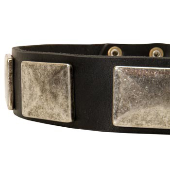 Wide Leather Mastiff Collar for Walking