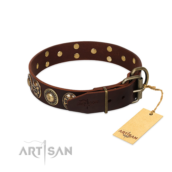 Strong studs on stylish walking dog collar