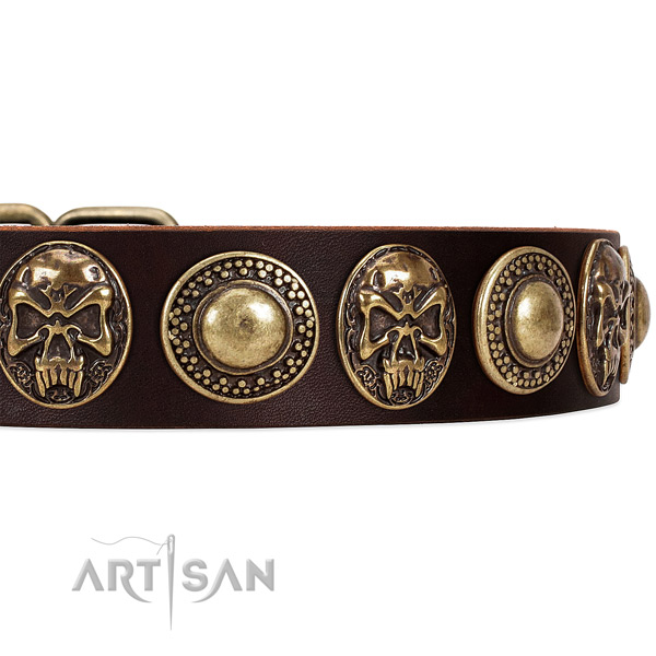 Full grain leather dog collar with studs for daily use