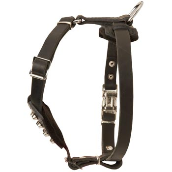 Leather Mastiff Puppy Harness for Comfy Walking
