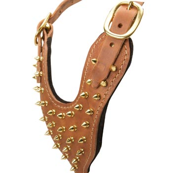 Brass Spiked Leather Mastiff Harness
