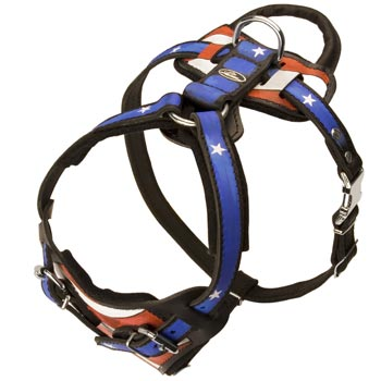 Leather SMastiff Harness with Handle Stitched to Back Plate