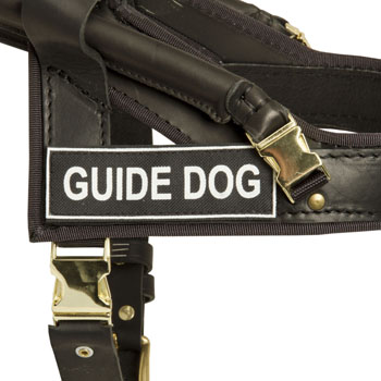 Mastiff Leather Guid Harness with ID Patches