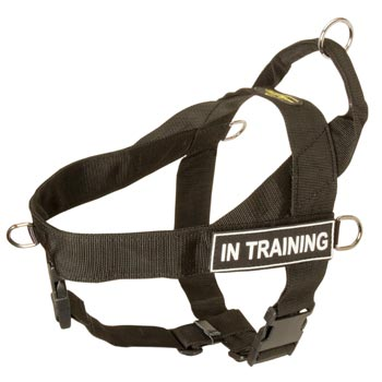 Mastiff Nylon Harness with ID Patches