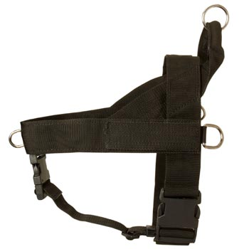 Mastiff Harness Nylon for Comfy Walking
