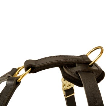 Corrosion Resistant D-ring of Mastiff Harness