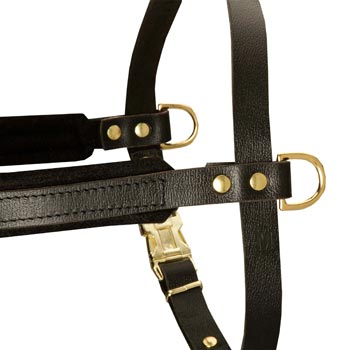 Training Pulling Mastiff Harness with Sewn-In Side D-Rings