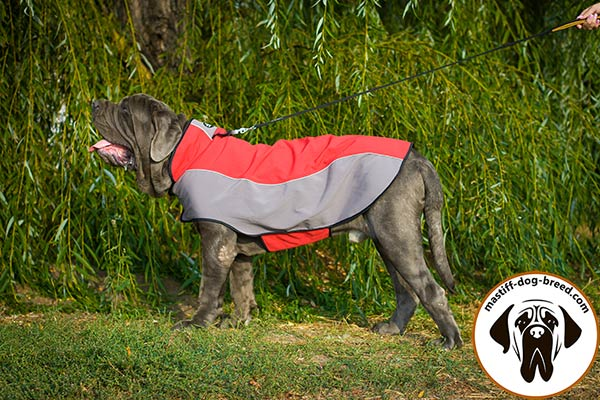 Nylon Mastino Napoletano jacket harness for any activities in cold weather