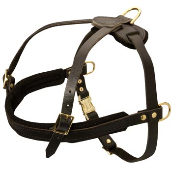 Leather Mastiff Harness for Dog Off Leash Training