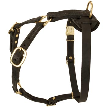 Tracking Leather Dog Harness for Mastiff
