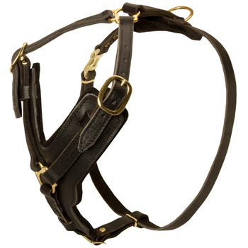 Comfortable Y-Shaped Leather Harness for Mastiff Attack  Training