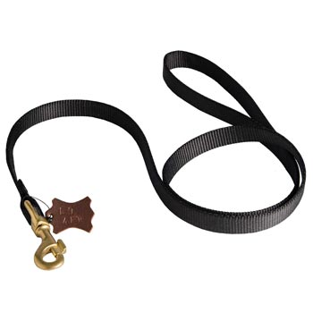 Walking Mastiff Leash