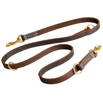 Leather Leash for Mastiff Everyday Walking