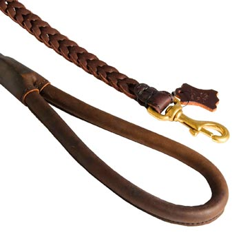 Braided Leather Mastiff Leash with Brass Snap Hook