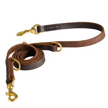 Strong Leather Leash for Mastiff Successful Training