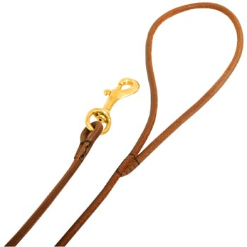 Leather Mastiff Leash with Comfy Round Hnadle