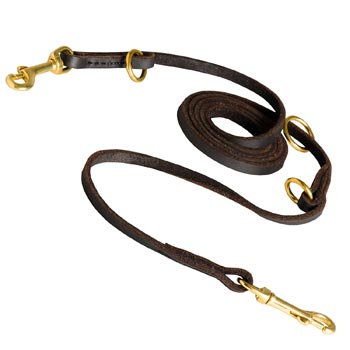 Multipurpose Mastiff Leather Leash for Effective Training