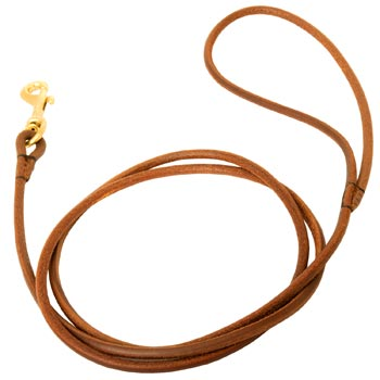 Leather Round Leash for Mastiff Elegant Look