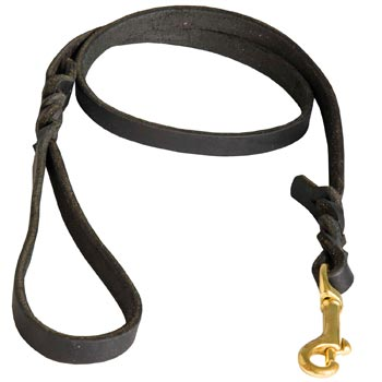 Training Leash for Mastiff