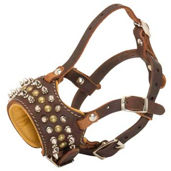 Mastiff Muzzle Leather Browne with Spikes and Studs