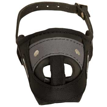 Nylon and Leather Mastiff Muzzle with Steel Bar for Protection Training