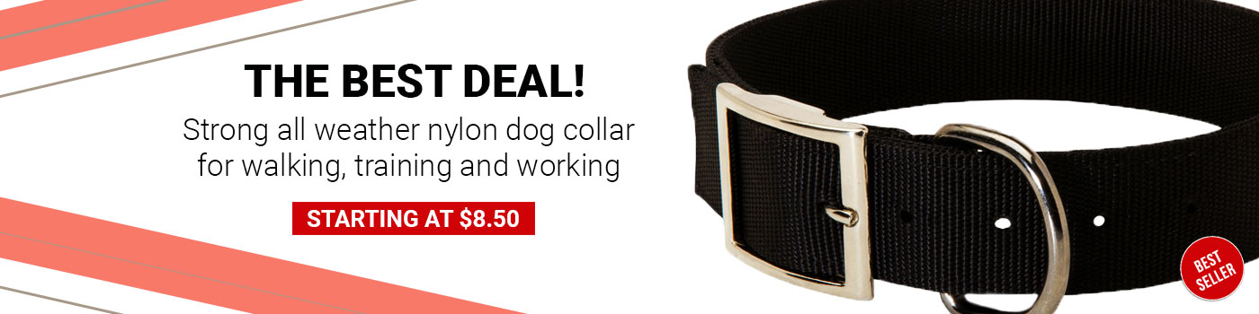 2 Ply Nylon Mastiff Collar