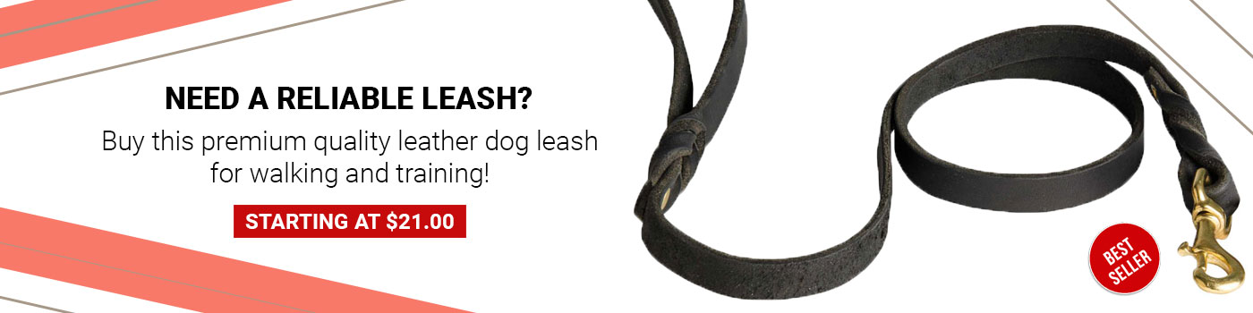 Walking Training Leather Mastiff Leash Braided